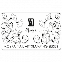 Scraper Moyra 11